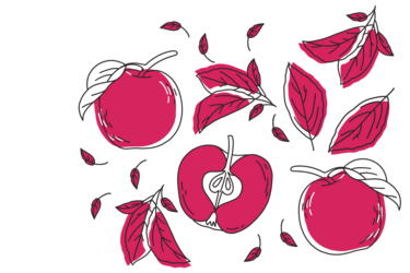 Illustration of Gloster apples; by Stefanie Kreuzer, b13 GmbH (CC BY-SA 4.0)