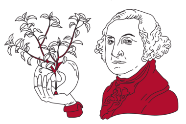 Illustration of George Washington holding an apple; by Stefanie Kreuzer, b13 GmbH (CC BY-SA 4.0)